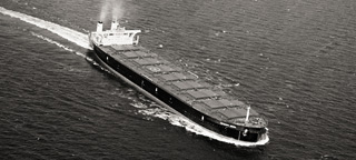 The Iron Pacific, built by Samsung Heavy Industries Co .Ltd image